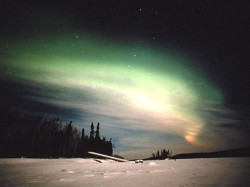 Northern Lights Show in Canada Tonight